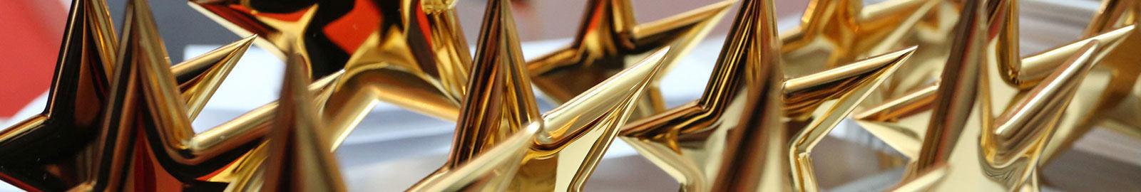 """Preisverleihung """"Sterne des Sports"""" in Gold 2017"""